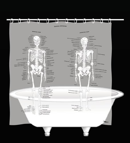2013-Shower-curtain-human-skeleton